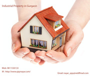 Industrial Property in Gurgaon